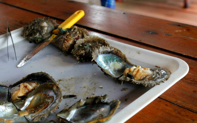 floating village - junk cruise - halong bay - vietnam - cat ba island - pearl farm - midnightblueelephant -